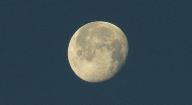 settima luna