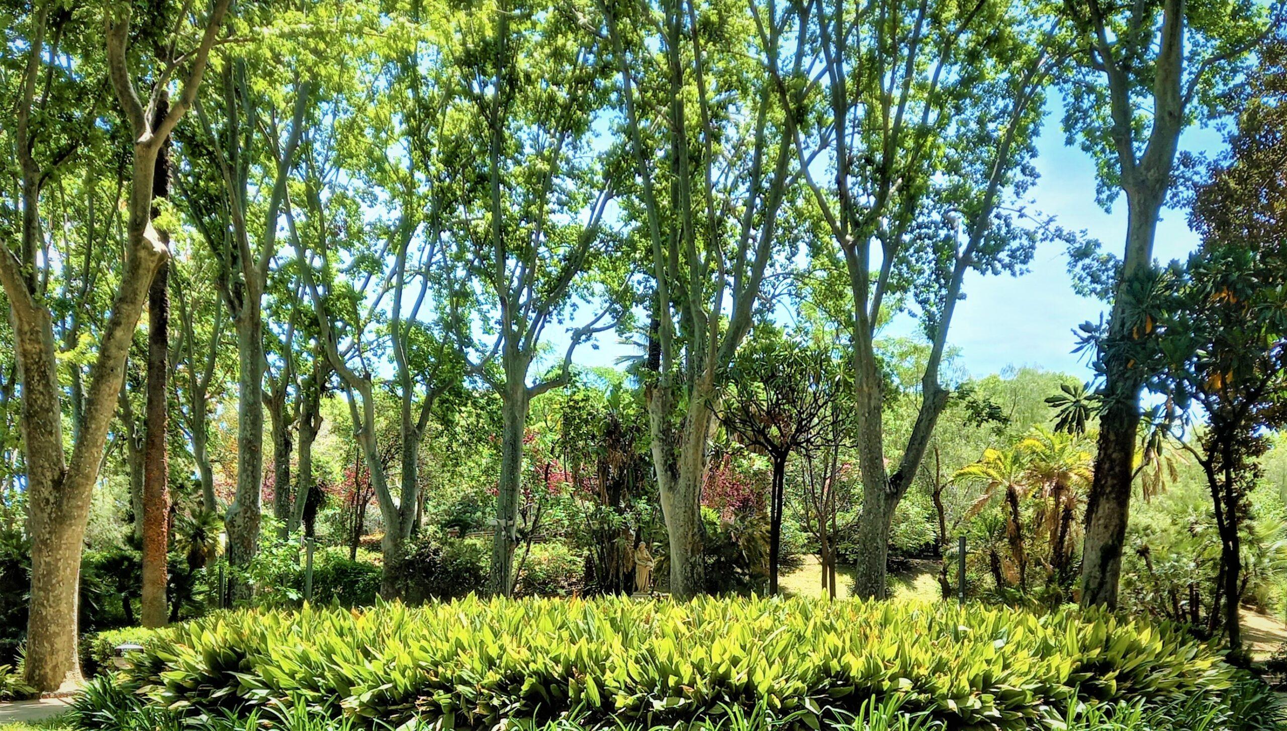 il giardino dentro il giardino grammatica follettiana